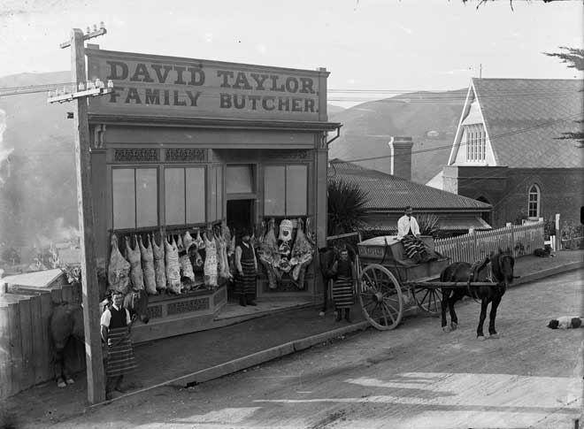 Mapping disease: typhoid in 1890s Wellington, New Zealand